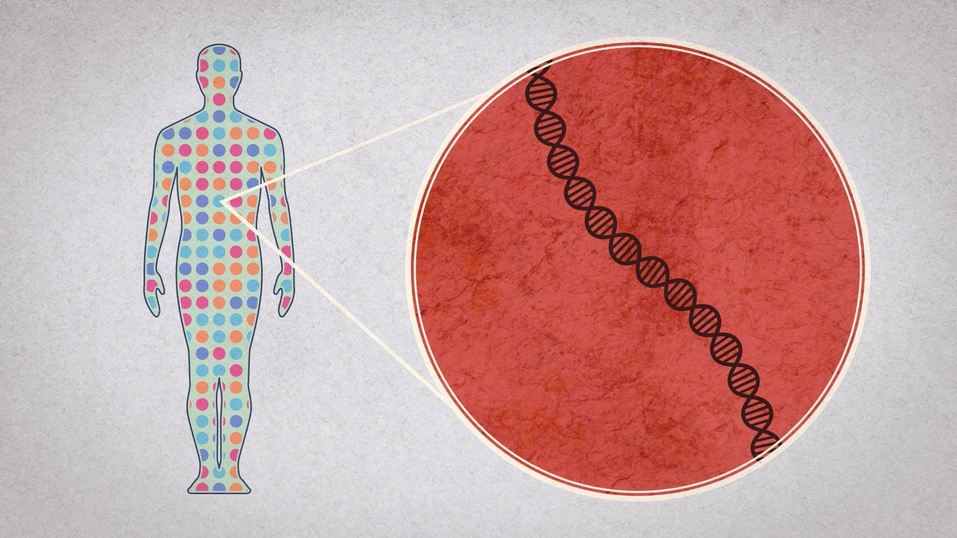 Decoding Human Genome & Obesity